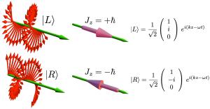 spin angular momentum