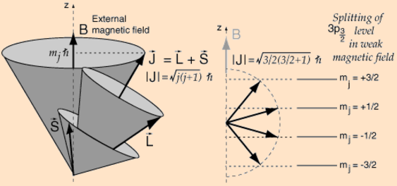 vector-model